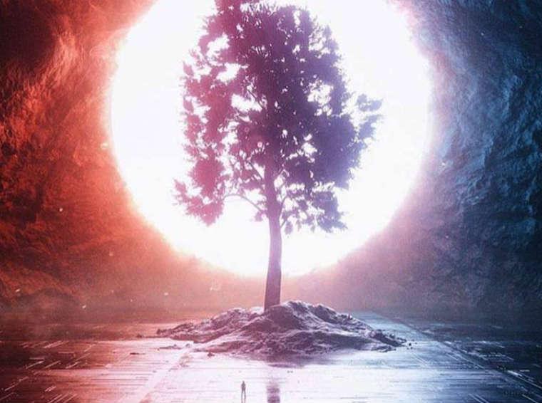 Jesteś całością. Drzewo życia, stan światła.